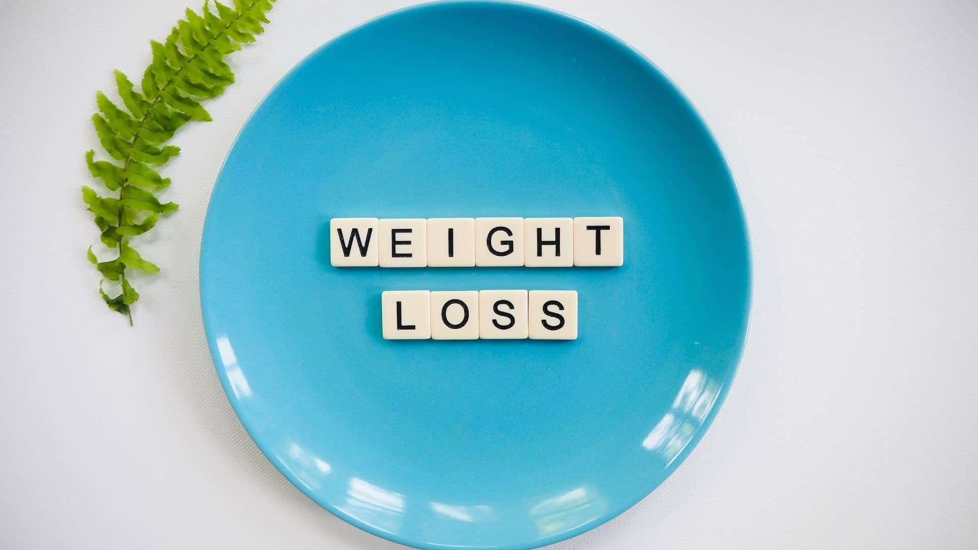 Weight Loss Plateau, Weight Loss, weight loss programs, workout routine, weight loss diet, fat burning